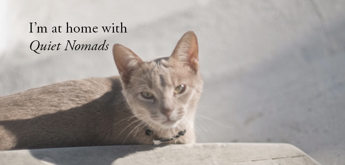 We'll love and care for your pets.